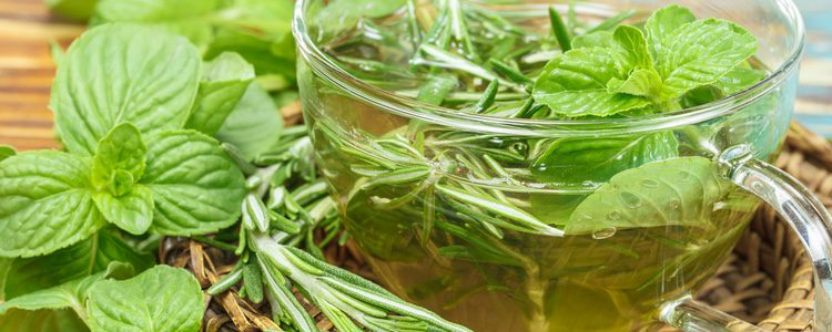 El té verde es muy beneficioso para la salud, en general, de las personas